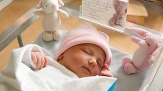 A crescut numărul nașterilor și căsătoriilor