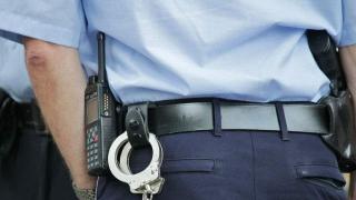A filmat un gândac fără acordul șefilor și riscă să fie demis din Poliție