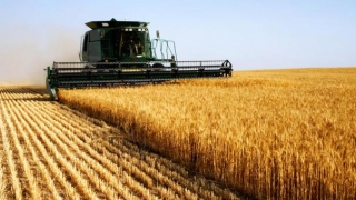 """""""Agricultura necesită investiții de 1,1 miliarde de euro până în 2020"""""""