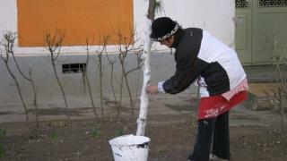 A început curățenia de primăvară în Constanța