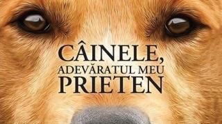 """O carte pe zi: """"Câinele, adevăratul meu prieten"""", de W. Bruce Cameron"""