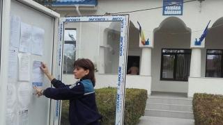 Alegeri parțiale la Constanța. Ce pățești dacă votezi de mai multe ori?