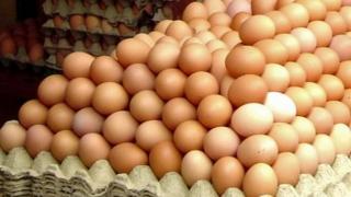 ALERTĂ! Ouă contaminate cu Fipronil, și în România!