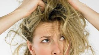 Alimente vinovate pentru părul gras