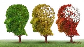 Alzheimer-ul se poate vindeca? Încă un pas făcut de specialişti