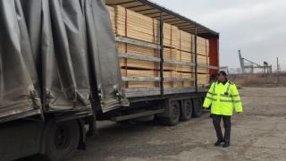Amenzi de 116.000 de lei pentru nereguli în domeniul prelucrării şi vânzării lemnului