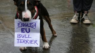 Ample proteste anti-Brexit în Marea Britanie