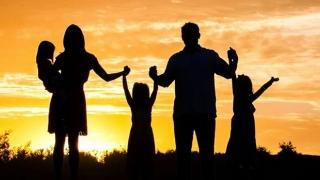 Când va avea loc referendumul pentru redefinirea noțiunii de familie