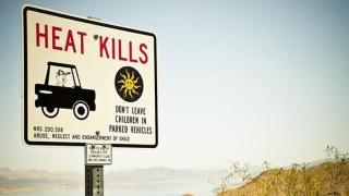 CANICULĂ ucigătoare în Spania, Croaţia și Portugalia! Grecia - risc de incendii!