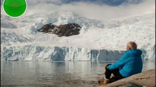"""Antarctica """"înverzește"""" în urma creșterii temperaturilor"""