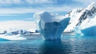 Antarctica își pierde ghețarii!