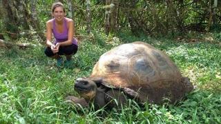 Care este secretul longevităţii ţestoaselor gigant din Galapagos? Pot trăi până la 180 de ani!