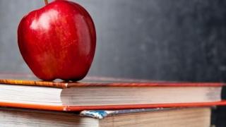 Educația din România este praf?! Vezi ce părere au experții europeni
