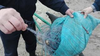B.D. la apă - Pescari prinși cu un kilometru de plase monofilament în saci