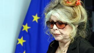 """Brigitte Bardot îl atacă pe Papa Francisc: este ca un """"blestem pentru animale"""""""