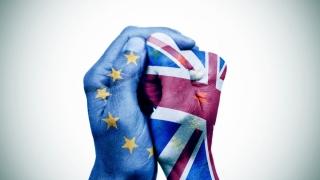 Britanicii aleg între solidaritate şi naţionalism