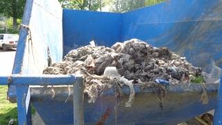 """Canalizările din Medgidia, transformate în """"coș de gunoi"""""""
