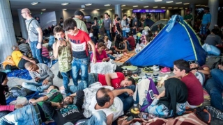 Ce beneficii au solicitanții de azil în România?