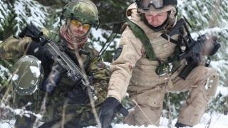 Cehia trimite armament şi muniţie în Irak şi Iordania, în lupta împotriva SI
