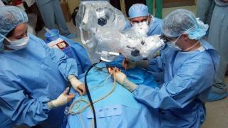 Ce transplanturi au înregistrat o scădere semnificativă în țara noastră