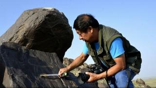 China: Cai arabi în picturi rupestre de acum două milenii
