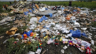 Cine este responsabil pentru catastrofa aviatică MH17? Vom afla pe 28 septembrie!