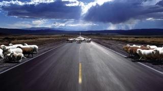 CNADNR premiază pasionații de călătorii