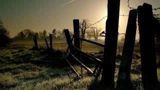 Colțul Troll-ului - Gardul vopsit al Fiscului stă să cadă