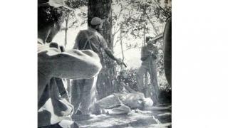 Colțul Troll-ului - Card de Fidel-itate
