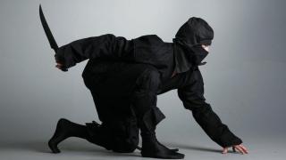 Colțul Troll-ului - Iarna, acest ninja care ne omoară