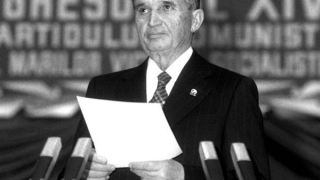 Colțul Troll-ului - Ceaușescu ar fi mândru de tehnocrați