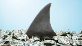 Colțul Troll-ului - Să trăiască rechinii, nu sclavii!