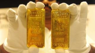 Colțul Troll-ului - Se confiscă aurul din măsea și saltea