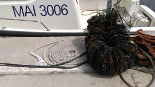 Constanţa: O adevărată industrie ilegală de pescuit, oprită de poliţie