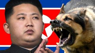 Coreea de Nord a reluat producția de plutoniu