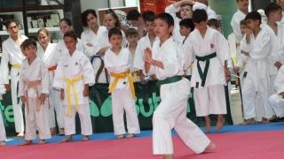 CS Karate Dinamic Constanța, 19 medalii la Cupa României la Karate Shotokan SKDUN