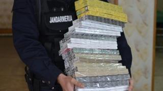 Cum au răpus jandarmii constănțeni fenomenul contrabandei
