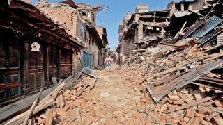 Cutremurul din Ecuador: peste 650 de morţi şi pagube materiale cât... PIB-ul