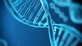 """Data la care avem primul copil, cunoscută? E """"scrisă"""" în ADN"""