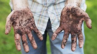 Despre boala mâinilor murdare
