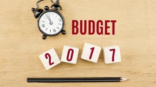 Dezbaterile pe tema bugetului pentru 2017, umbrite de scandalul ordonanțelor