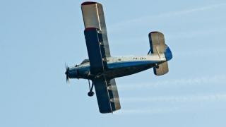 Muștele și țânțarii din Constanța și Mamaia, doborâți de avioane!