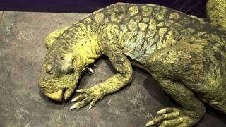 Dinozaur reconstituit perfect după o muncă titanică! Cum arăta Psittacosaurus?