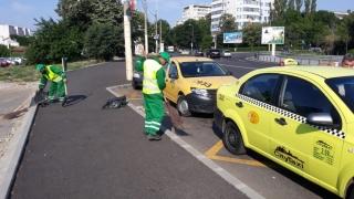 Ce amenzi riști dacă arunci gunoaiele pe străzile Constanței