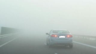 Cod galben de ceață la Constanța