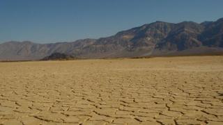 E dezastru! Sute de mii de hectare de culturi agricole, distruse de secetă