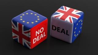 Cei mai mari perdanţi ai unui Brexit fără acord sunt... britanicii!
