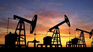 Prețul petrolului a avut o creștere modestă