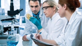 S-au descoperit anticorpi care pot neutraliza virusul Zika