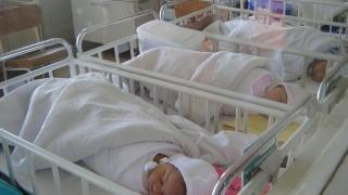 Ce s-a făcut pentru sprijinul nou-născuților în stare gravă?